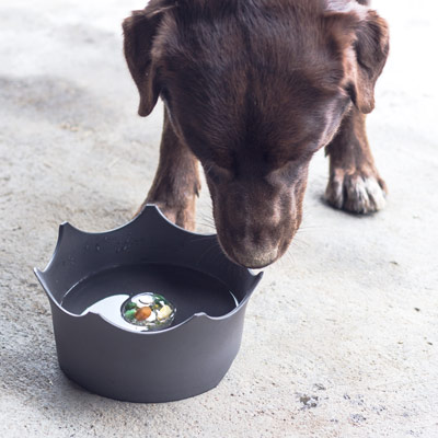 crownjuwel pet bowls with crystals and gems