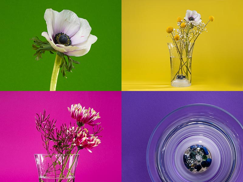 flower vase flora with crystals