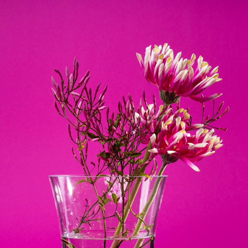 vitajuwel flower vase with crystals in glass